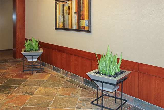 Indoor Plant Design Houston Tx - building lobby interior landscape