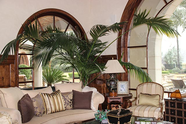 Interior Landscape Houston, Residential Project