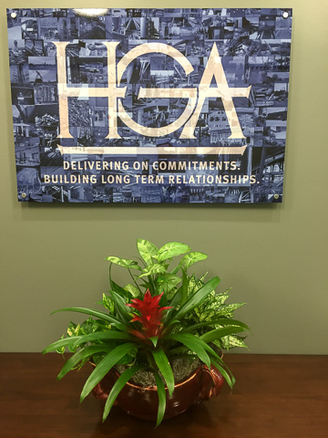 colorful office-plants in Houston, Tx